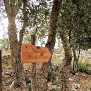 Walks in Nature and Trekking on Ulysses' Coast
